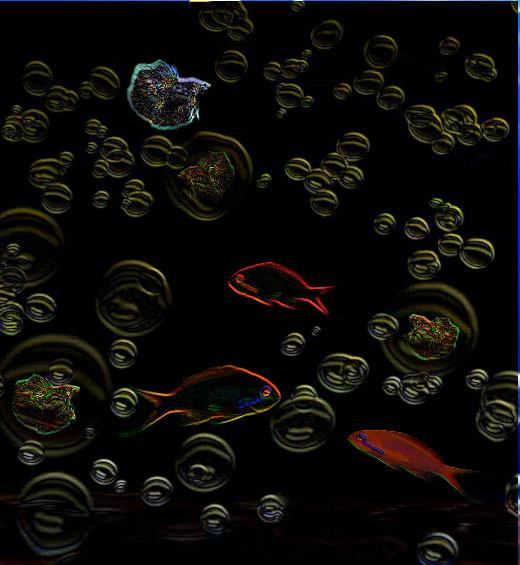 WATER BUBBLE FISH by Missi Lynn Boness