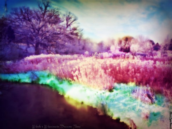 Winter Wisconsin Dream Time by Missi Lynn Boness