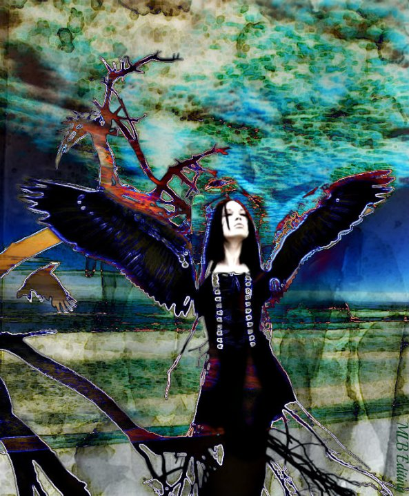 Dark Angel Digital Photo Edit